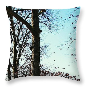 Throw Pillow featuring the photograph Crows In For Landing by Pamela Hyde Wilson