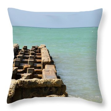 Crumbled Dock Throw Pillow