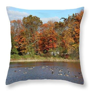 Ct Autumn Colors Throw Pillow
