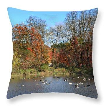 Ct Autumn Lake. Throw Pillow