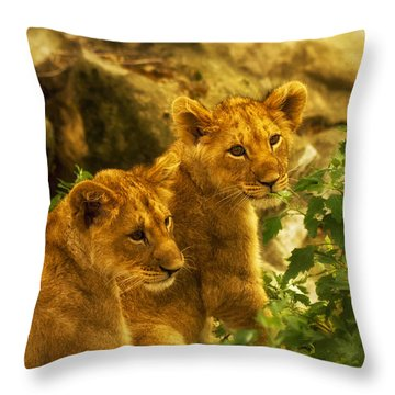 Cubs Throw Pillow