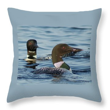Curious Loons Throw Pillow by Steven Clipperton