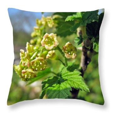 Currant In Bloom Throw Pillow by Ausra Huntington nee Paulauskaite