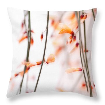 Curtain Throw Pillow by Priska Wettstein