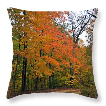 Curve In Fall Throw Pillow by Marty Koch