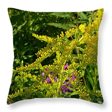 Curves Of Goldenrod Throw Pillow by Judi Bagwell