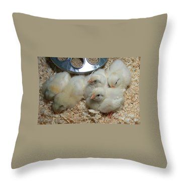 Throw Pillow featuring the photograph Cute And Fuzzy Chicks by Chalet Roome-Rigdon