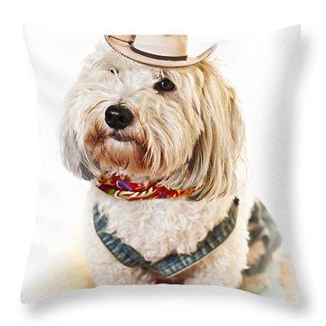 Cute Dog In Halloween Cowboy Costume Throw Pillow by Elena Elisseeva