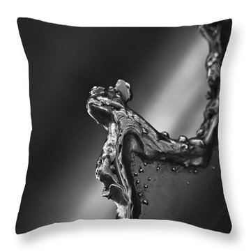Cutting Edge Sibelius Monument Throw Pillow by Clare Bambers