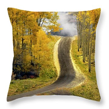 Cutting Through The Aspens Throw Pillow