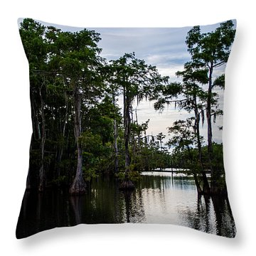 Throw Pillow featuring the photograph Cypress Swamp In Louisiana by Ester  Rogers
