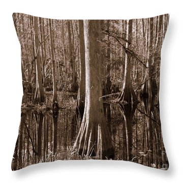 Cypress Swamp Reflection In Sepia Throw Pillow by Carol Groenen