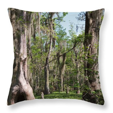 Cypress Trees And Water Hyacinth In Lake Martin Throw Pillow by Louise Heusinkveld