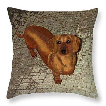 Dachshund - Cinnamon Throw Pillow by L J Oakes
