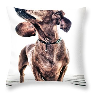 Dachshund Throw Pillow by Stelios Kleanthous