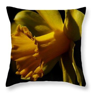Daffodil Throw Pillow by Karen Harrison