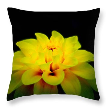 Throw Pillow featuring the photograph Dahlia Delight by Jeanette C Landstrom