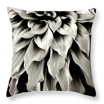 Dahlia Flower  Throw Pillow by Sumit Mehndiratta