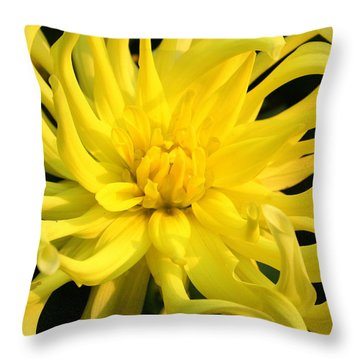 Throw Pillow featuring the photograph Dahlia In Yellow by Laurel Talabere