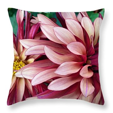 Throw Pillow featuring the photograph Dahlias by Janice Drew