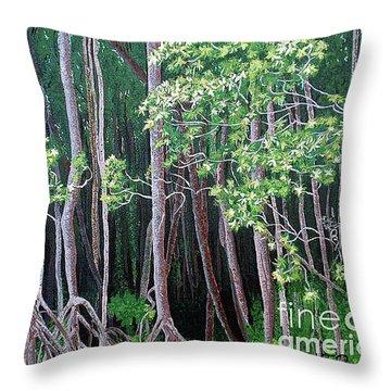 Daintree Forest At Twilight Throw Pillow by Tatjana Popovska