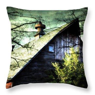 Dairy Barn Throw Pillow by Julie Hamilton