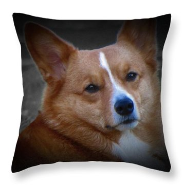 Daisie Our Corgi Throw Pillow by David Dehner