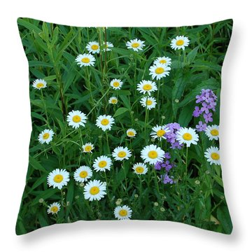 Daisies Throw Pillow by Aimee L Maher Photography and Art Visit ALMGallerydotcom