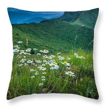 Daisies In The Mountyain Throw Pillow