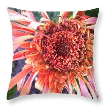Daisy In The Wind Throw Pillow