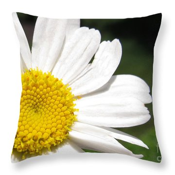Throw Pillow featuring the photograph Daisy May by Arlene Carmel