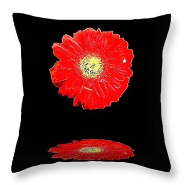 Throw Pillow featuring the photograph Daisy Reflection by Carolyn Repka