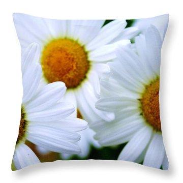 Daisy Trio Throw Pillow