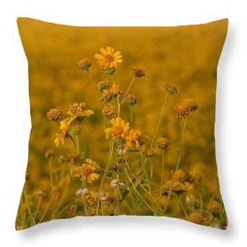 Daisy's Throw Pillow