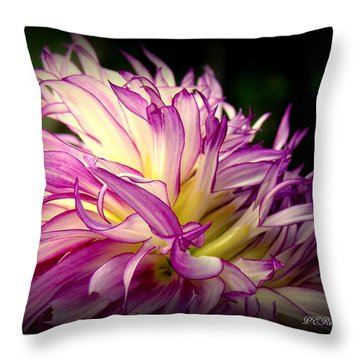 Dally Throw Pillow