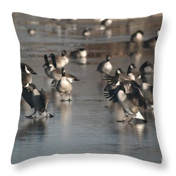 Throw Pillow featuring the photograph Dancing Geese by Mark McReynolds