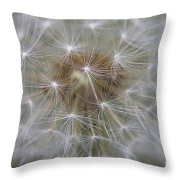 Dandelion Clock. Throw Pillow