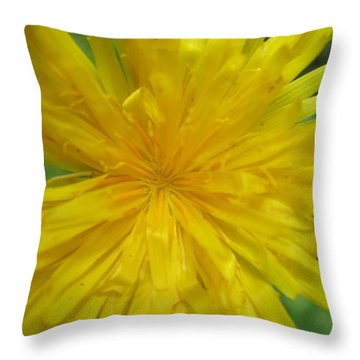 Throw Pillow featuring the photograph Dandelion Close Up by Kym Backland