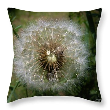 Throw Pillow featuring the photograph Dandelion Going To Seed by Sherman Perry