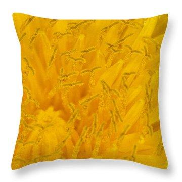 Dandelion Up Close Throw Pillow