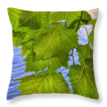 Dangling Leaves Throw Pillow by Deborah Benoit