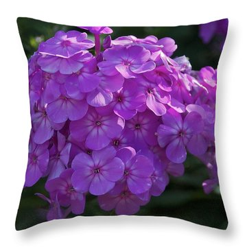 Throw Pillow featuring the photograph Dappled Light by Joseph Yarbrough