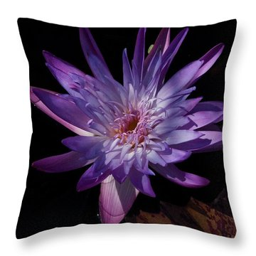Dark Beauty Throw Pillow by Joseph Yarbrough