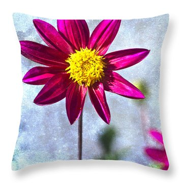 Dark Pink Dahlia On Blue Throw Pillow