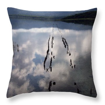 Dark Reflections Throw Pillow