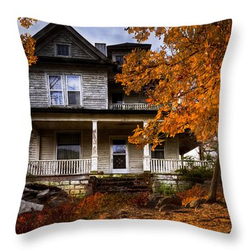 Dark Shadows Throw Pillow by Debra and Dave Vanderlaan
