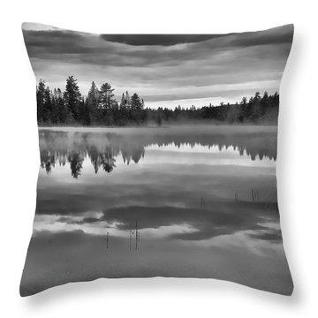 Dark Tranquility Throw Pillow