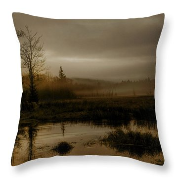 Darkness Approaches Throw Pillow by Greg DeBeck