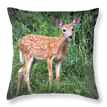 Darling Fawn Throw Pillow by Marty Koch
