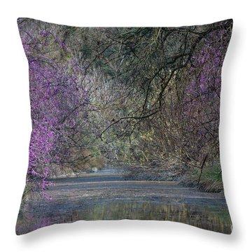Davis Arboretum Creek Throw Pillow by Diego Re